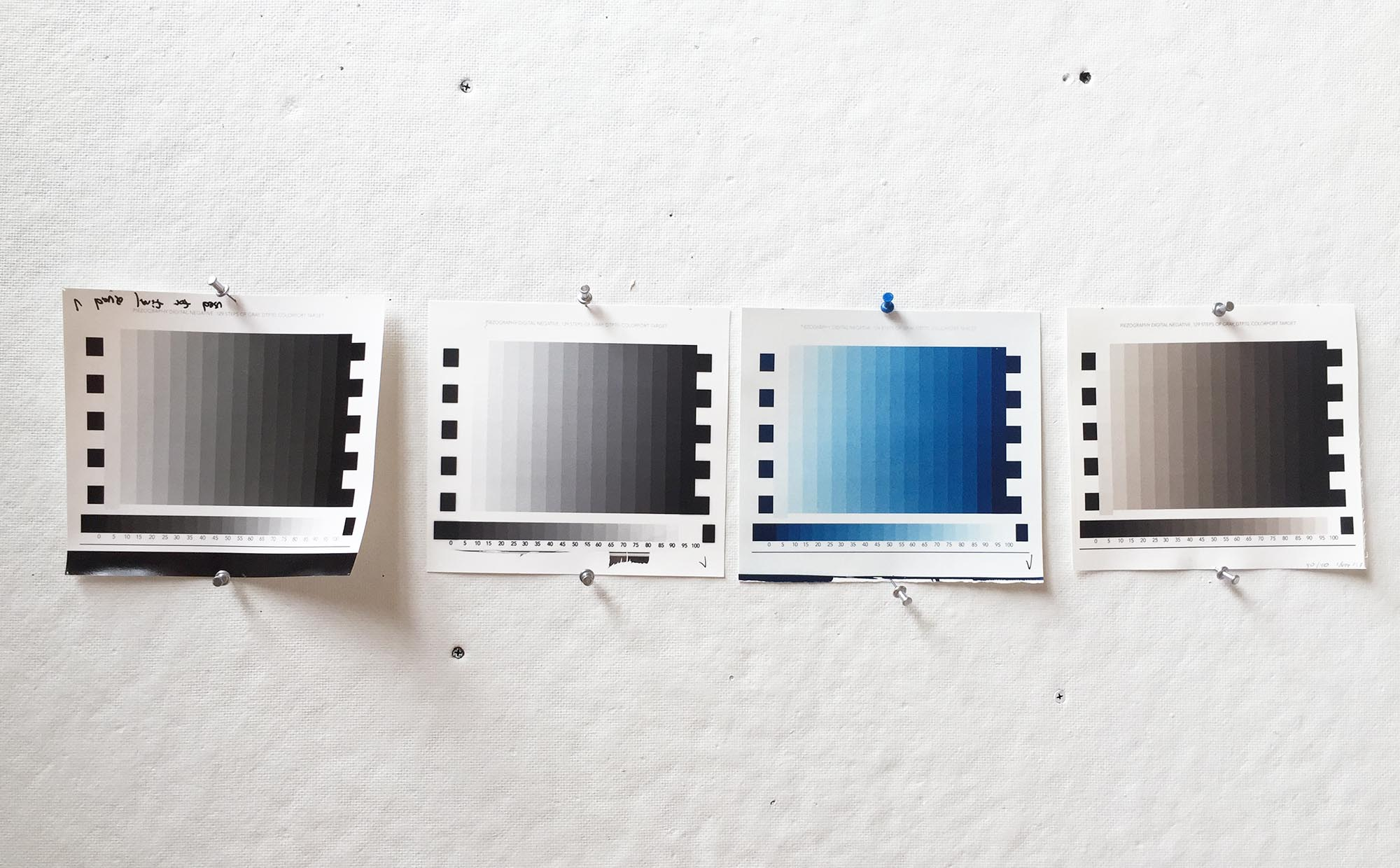 Image showing silver, ziatype, cyanotype, and platinum